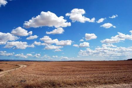 Prairies Montana