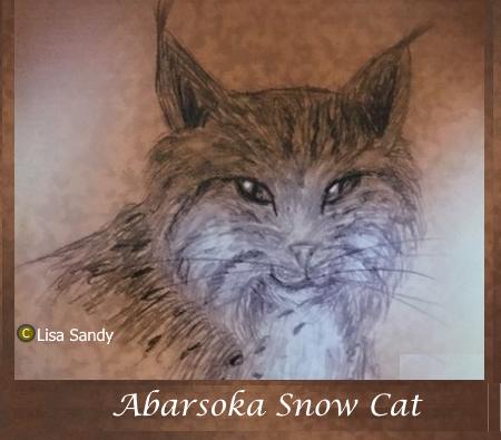 Absaroka Cat