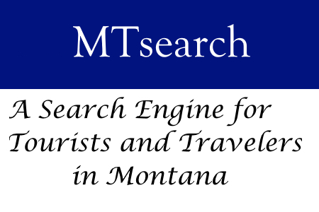 Search engine MT