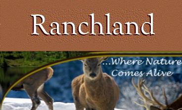 Ranchland Region Montana