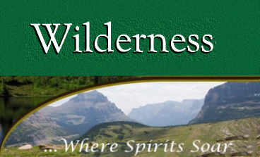 Wilderness Region Montana