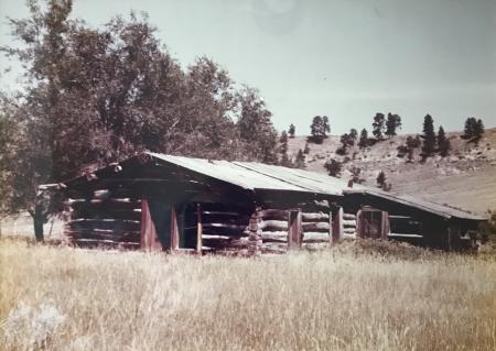 pioneer home MT