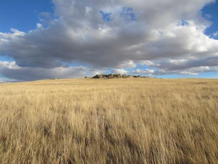 prairies MT