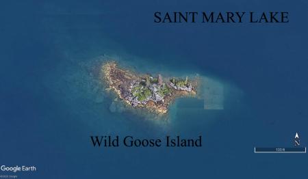 Wild Goose Island