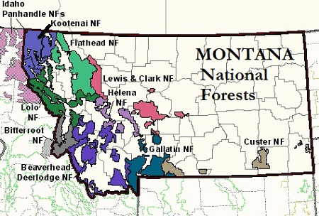 National Forests Montana