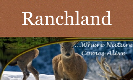 Ranchland MT