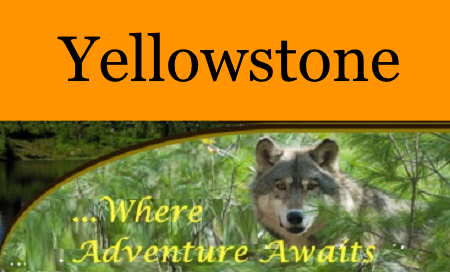Yellowstone MT